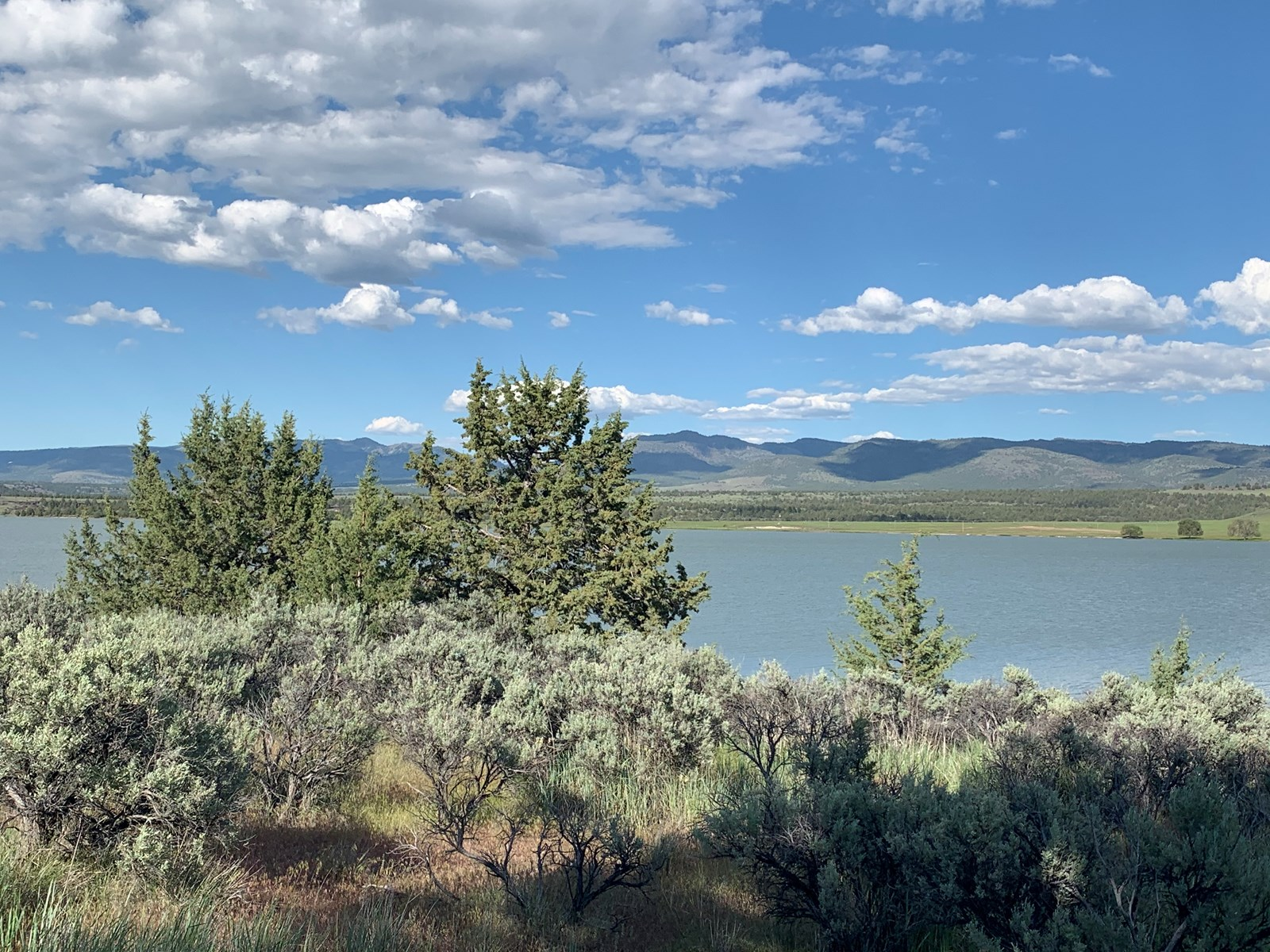 Alturas, CA, Buildable Lakefront Land For Sale