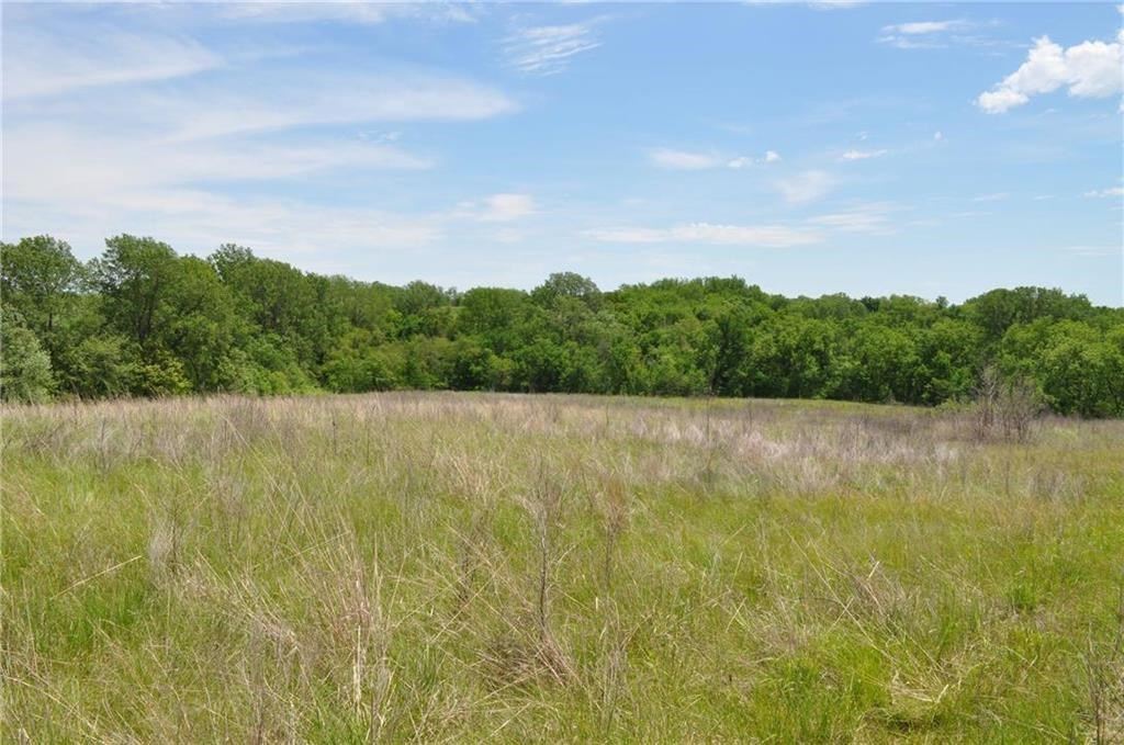 45+/- Ac. Gentry County, 34+/- in CRP & 10 +/- Great Hunting