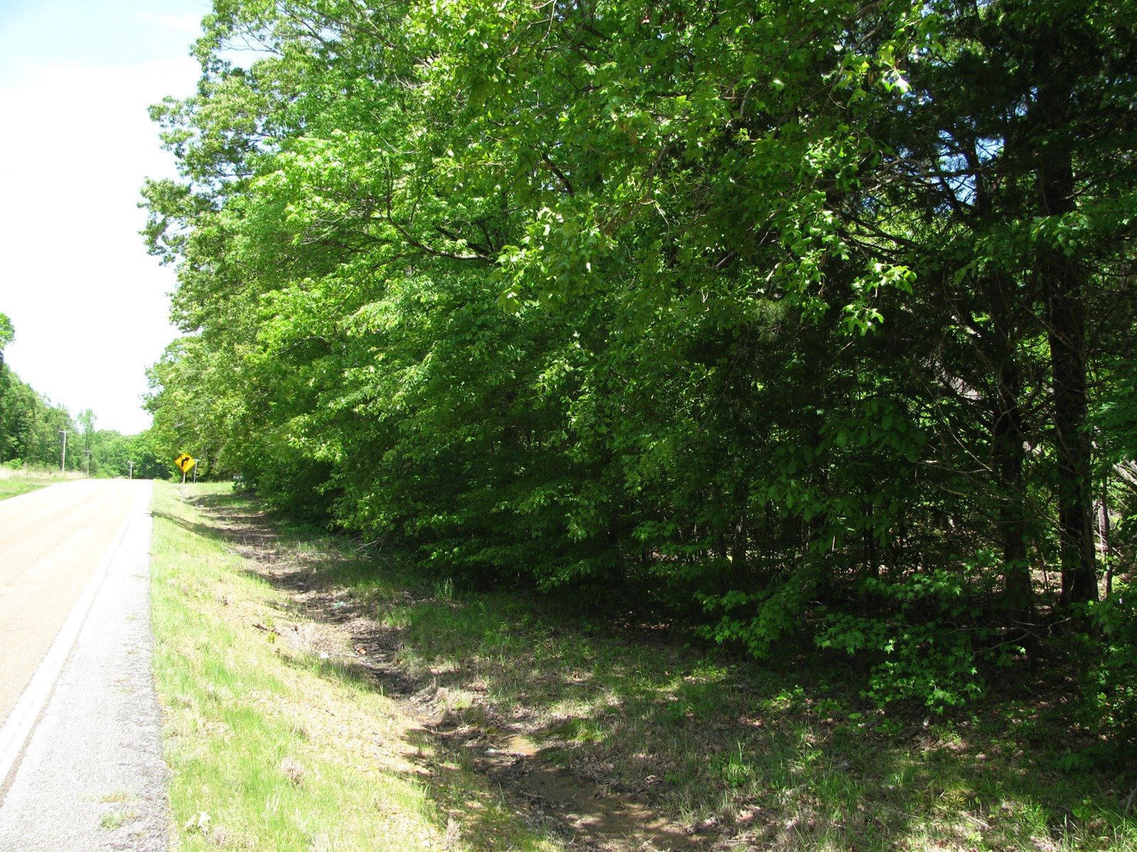 UNRESTRICTED LAND FOR SALE IN TENNESSEE, WOODED, PRIVATE