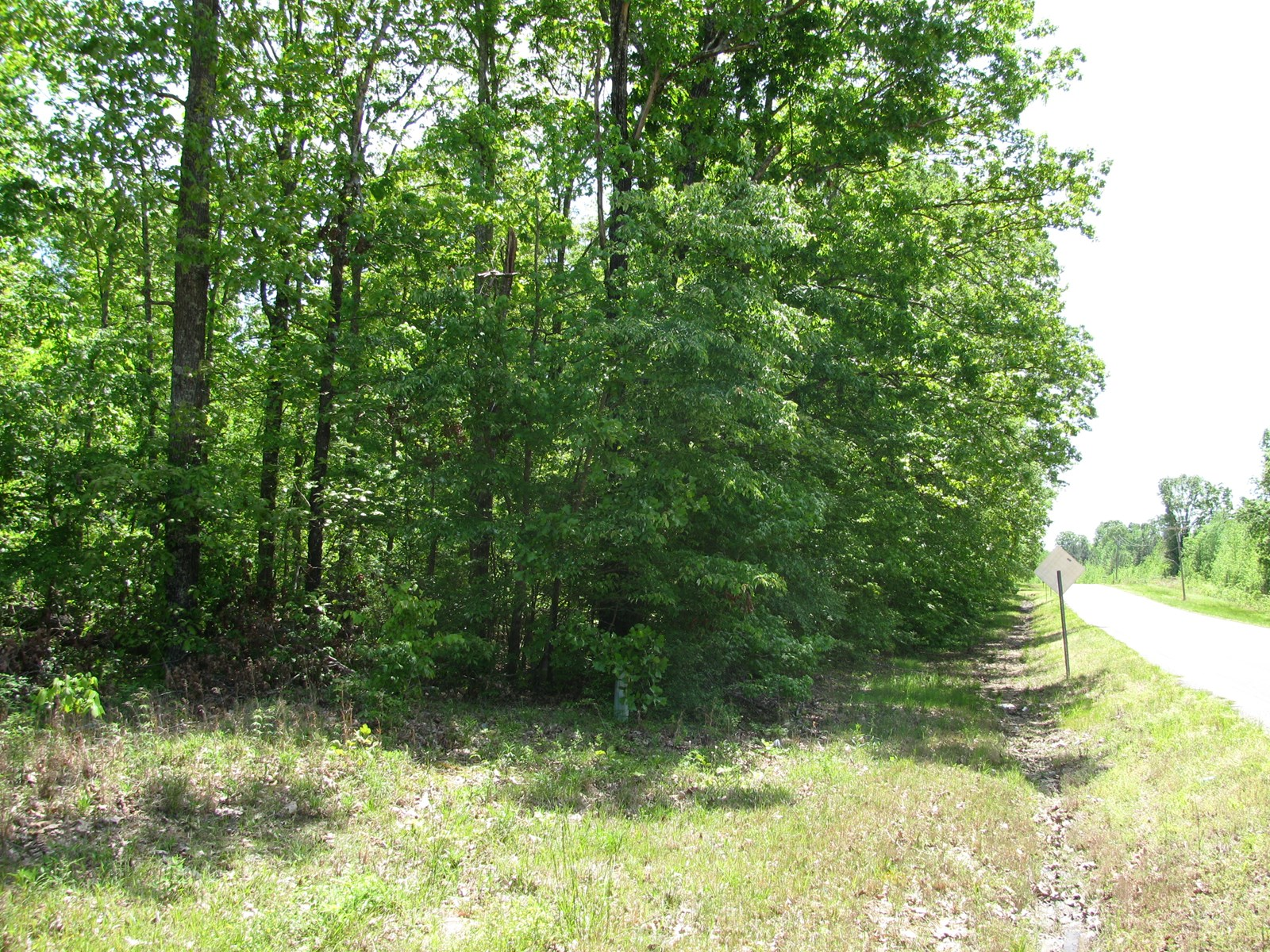 3 ACRES LAND FOR SALE IN TN, PRIVATE, WOODED