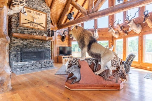 High Fence Hunting Ranch with Log Lodge