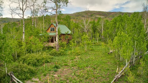 Colorado Mountain Cabin with stocked pond and Forest access