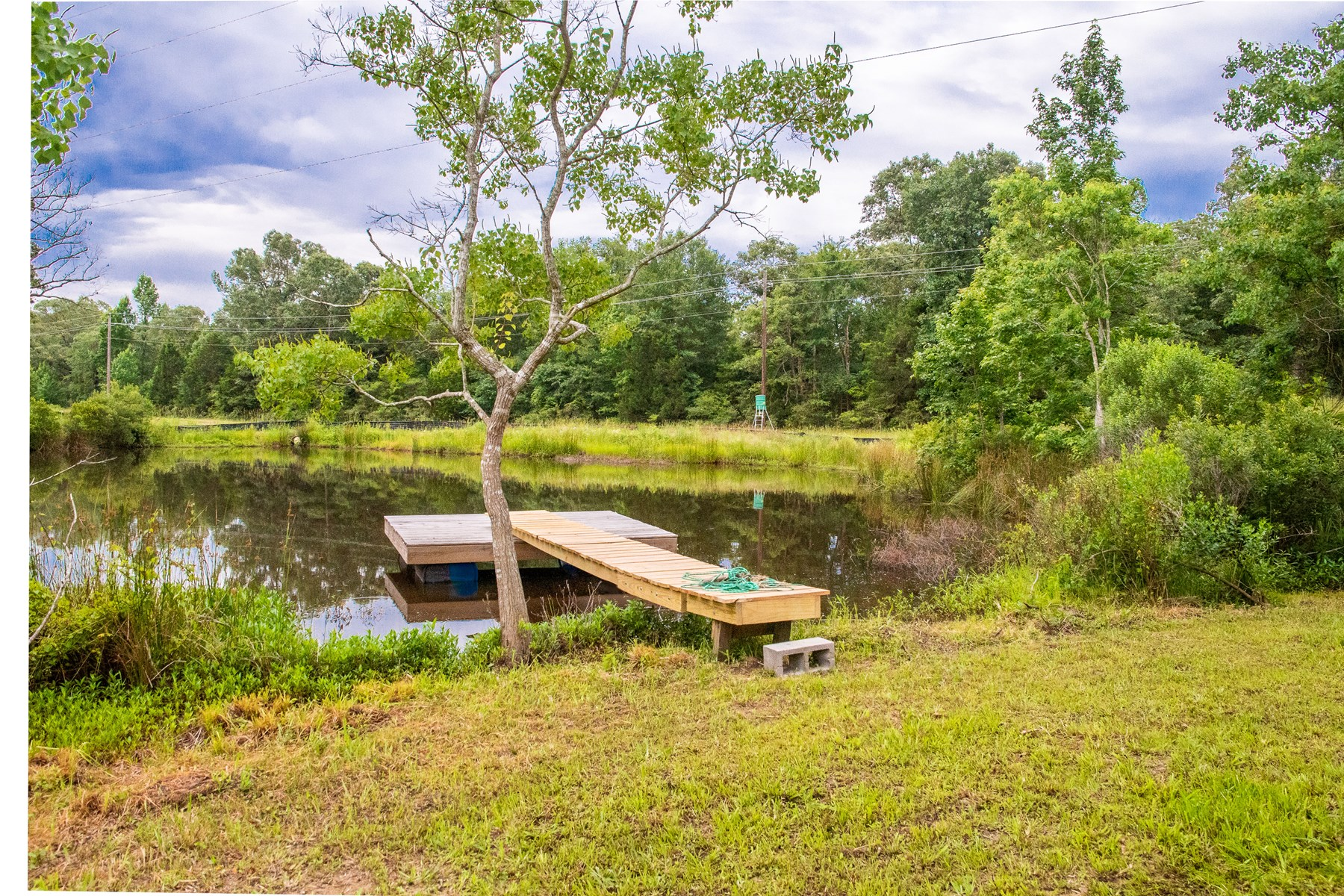 Home & 12 Acres For Sale - Buffalo, TX- Leon County TX