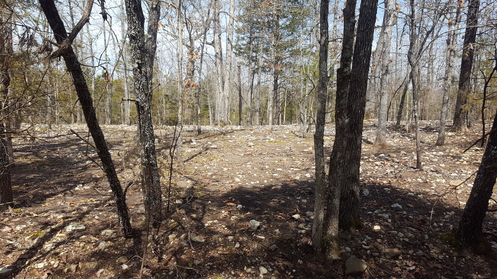 Lot at Bull Shoals Lake for Sale - Southern Missouri