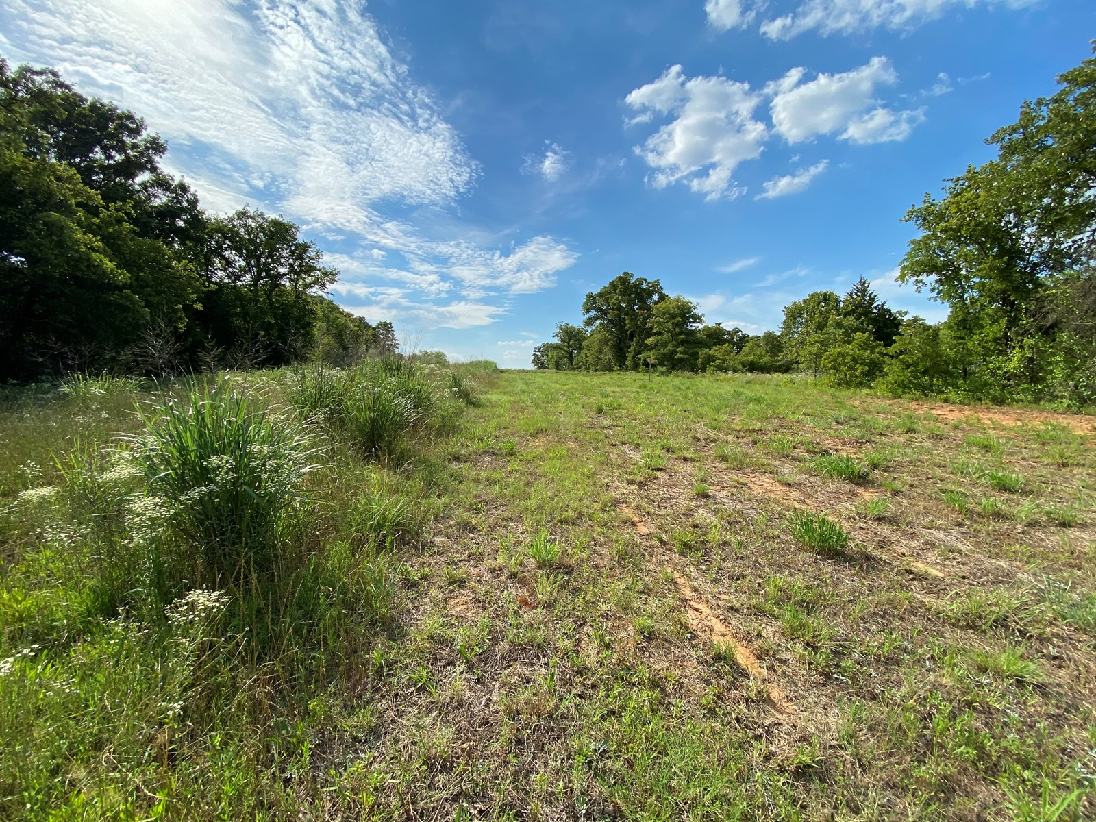 RAW WOODED LAND SUITABLE FOR BUILDING/ HUNTING IN OKLAHOMA
