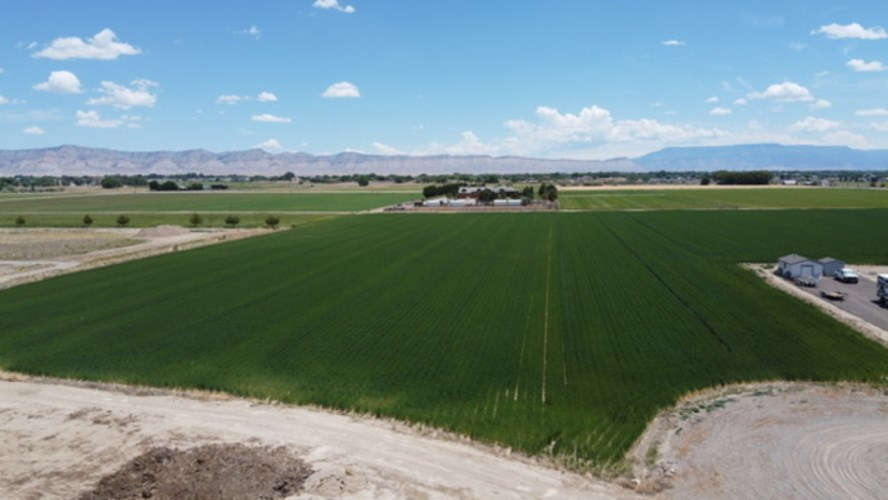 Productive Farm for Sale in Western Colorado