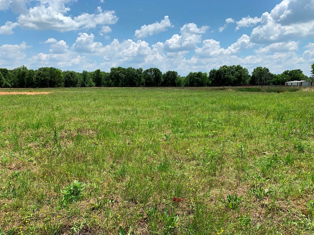 SMALL ACREAGE IN FLINT TEXAS READY TO BUILD ON!