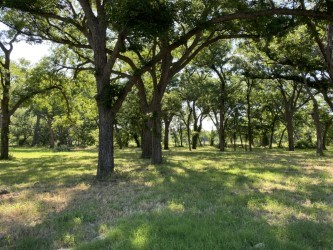 Texas River Property Hunting Fishing Birds Trees Coryell Co.