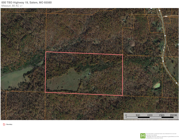 HUNTING/RECREATION/BUILDING LAND NEAR SALEM, MO - 80 Ac +/-