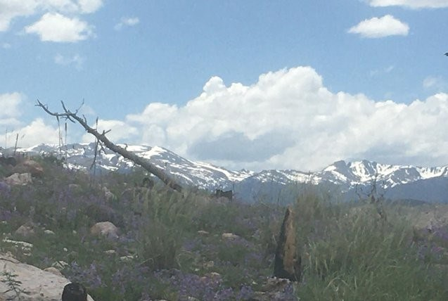 Stunning Mountain Views!