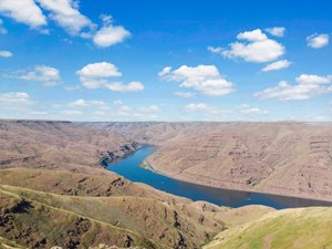CATTLE RANCH FOR SALE IN WASHINGTON STATE