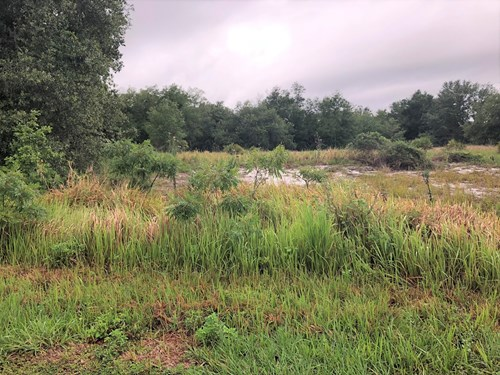 BUILD YOUR DREAM HOME, 1 ACRE, VACANT LAND, CENTRAL FLORIDA