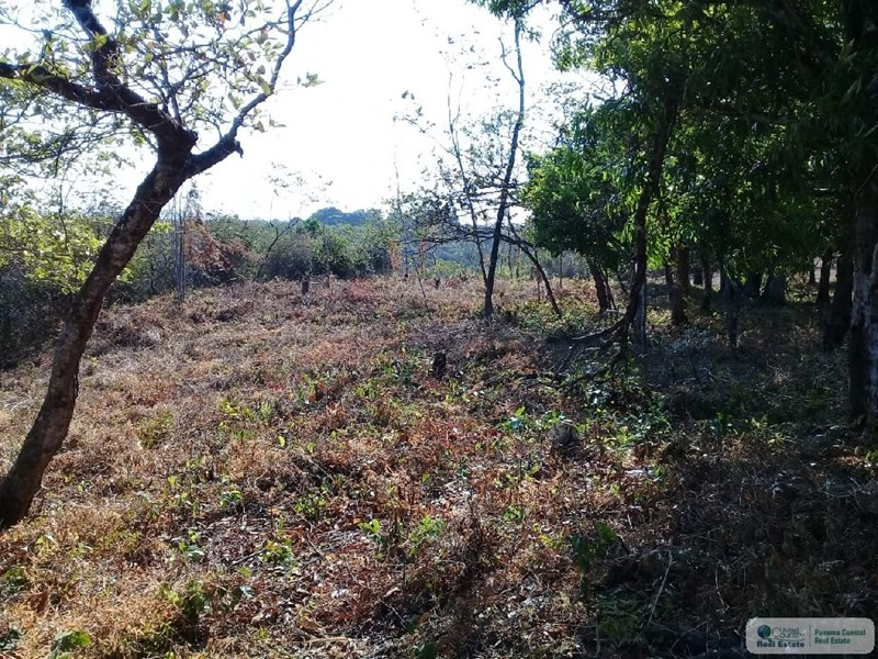 land for sale panama