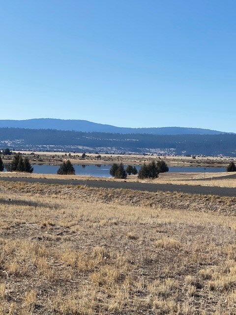 Beautiful Vacant Land For Sale in California Pines