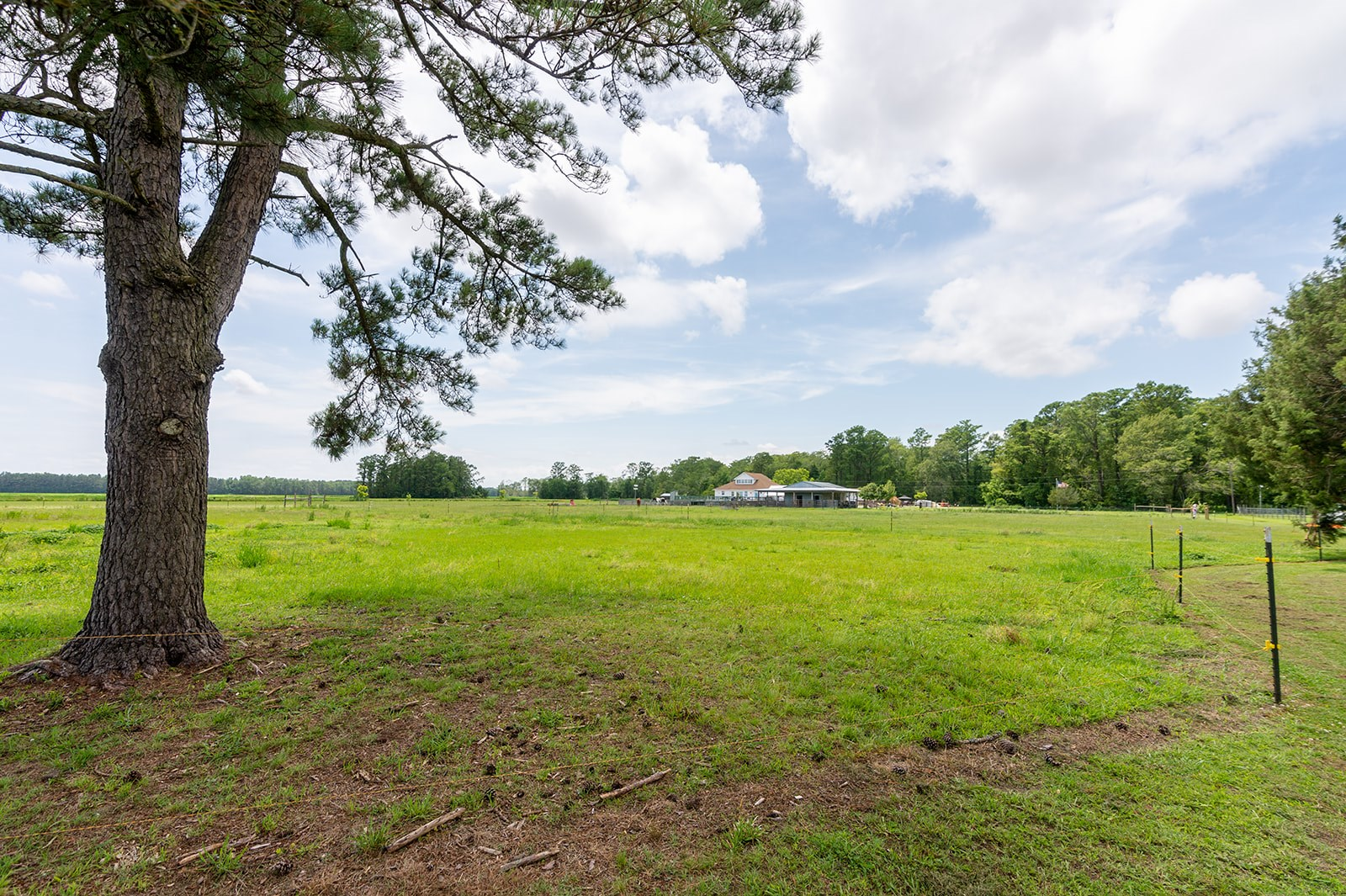 Pasquotank County Land For Sale