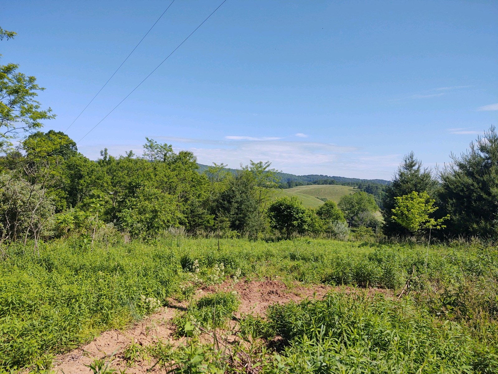 Acreage for Sale in Floyd VA