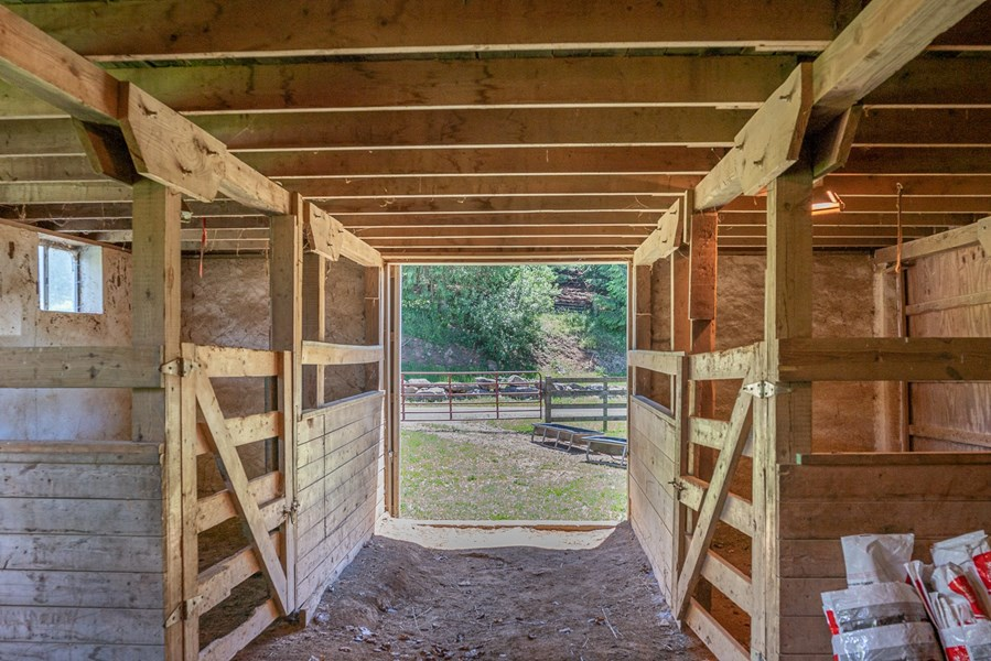 5 stall barn with feed/tack room