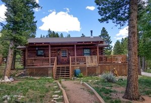 LOG CABIN NESTLED IN THE PINES