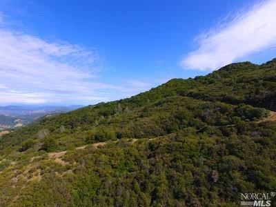 Napa County Realtree / Hunting Properties For Sale