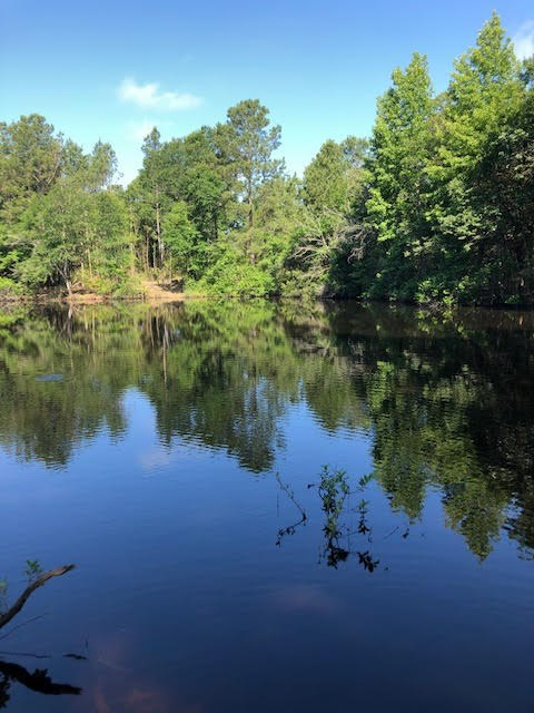 64.262 ACRES RECREATIONAL/HUNTING RESIDENTIAL LAND FOR SALE
