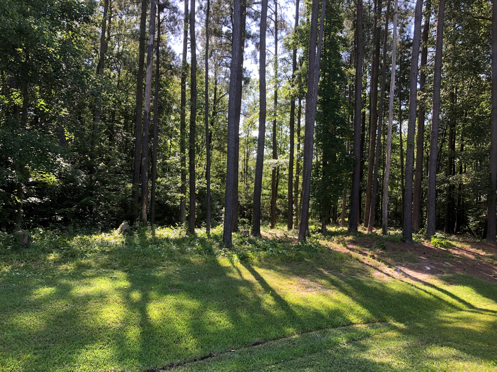 Golf Course Lot For Sale in Albemarle Plantation