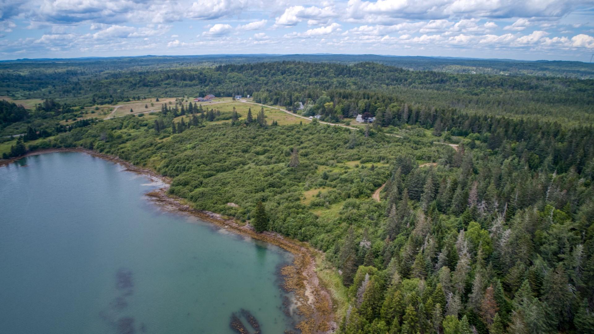 Oceanfront Land For Sale in Trescott, Maine