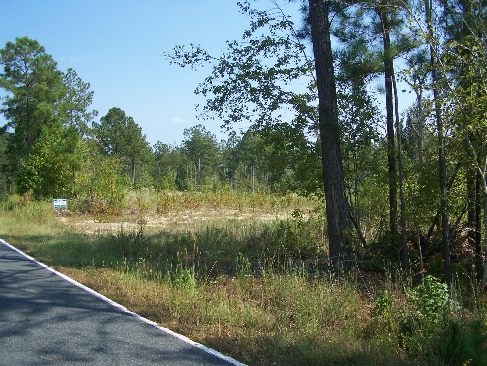12 Acres Cleared & Perced in Blythewood, South Carolina