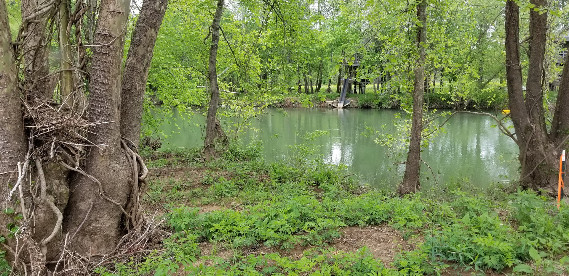 Buffalo River Camping lot for sale!