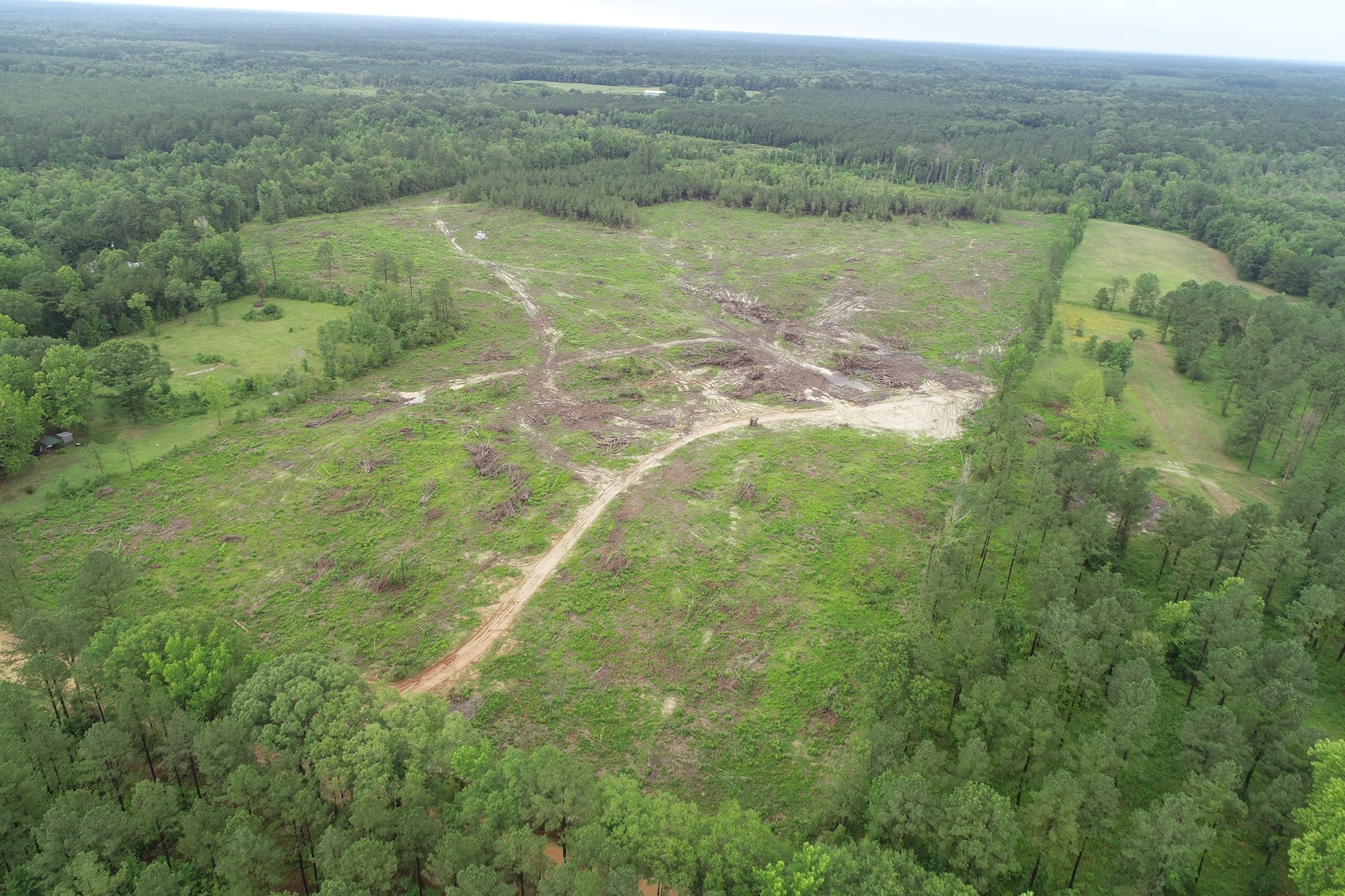 Cleared Timber Land for Sale near Junction City, Arkansas