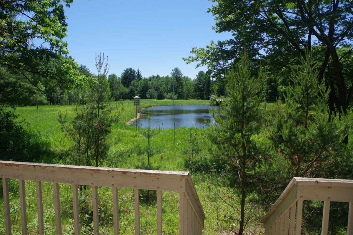 Buildable Mixed Land in Juneau County WI