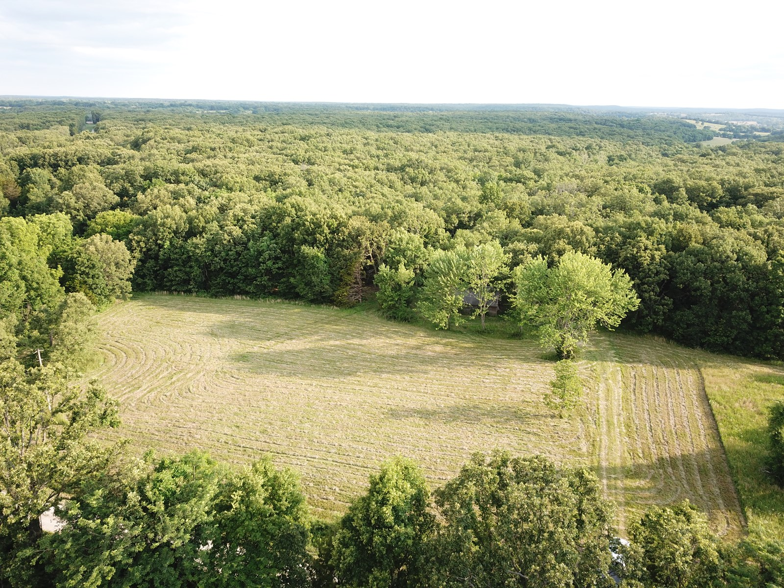 Land for sale in Osceola, MO 20 ac +/-