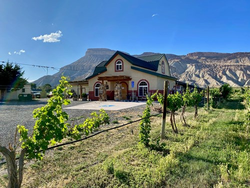 Colorado Vineyard and Winery with Country Home For Sale