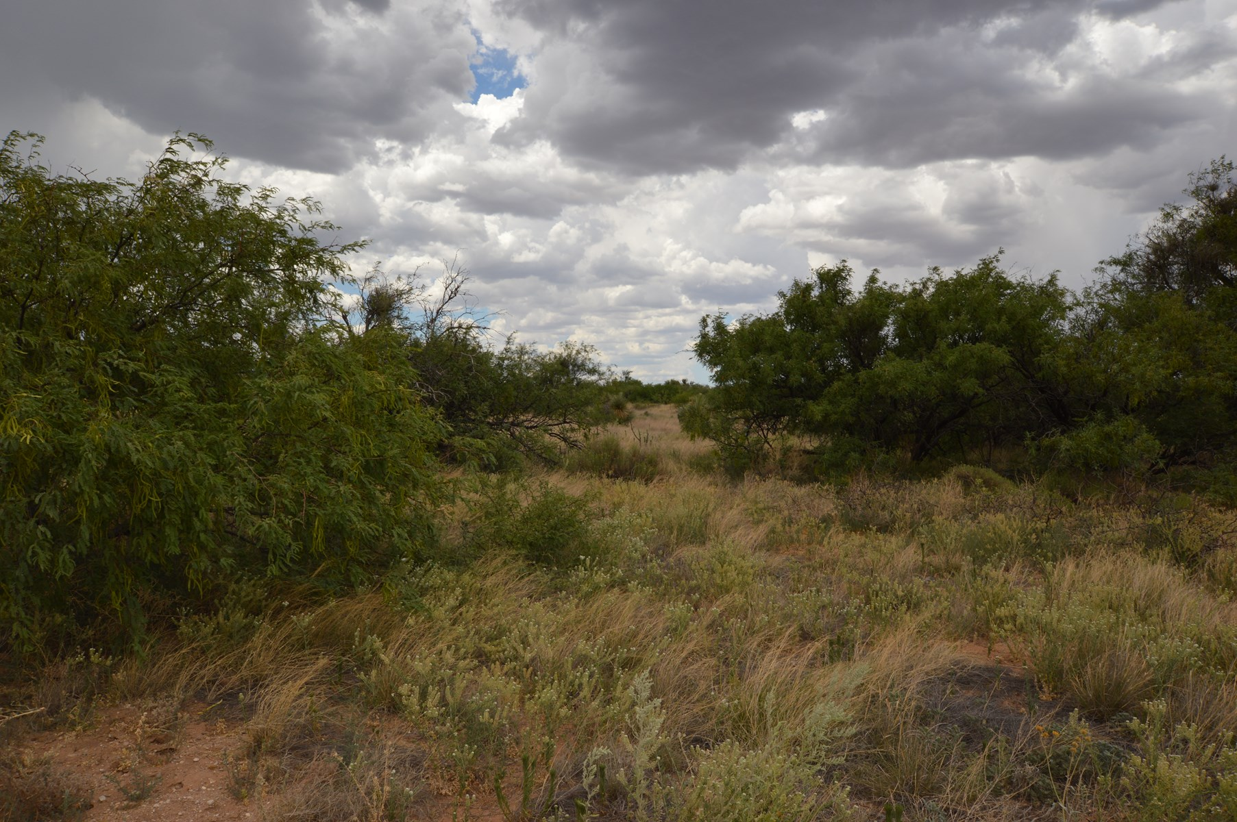 LOVELY MOUNTAIN VIEWS from this 16 ac parcel in Three Canyon