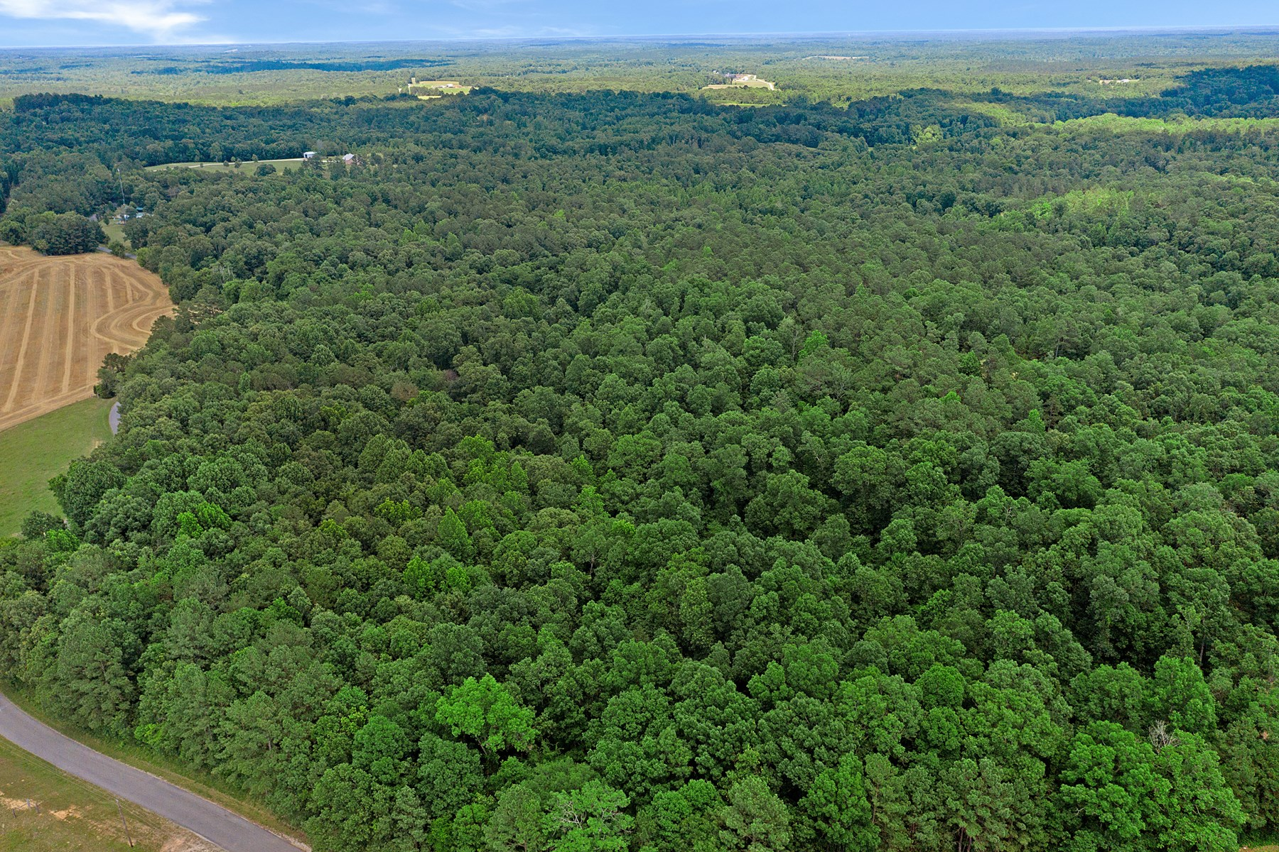 Recreational Hunting Property / Forestry Land For Sale - TN
