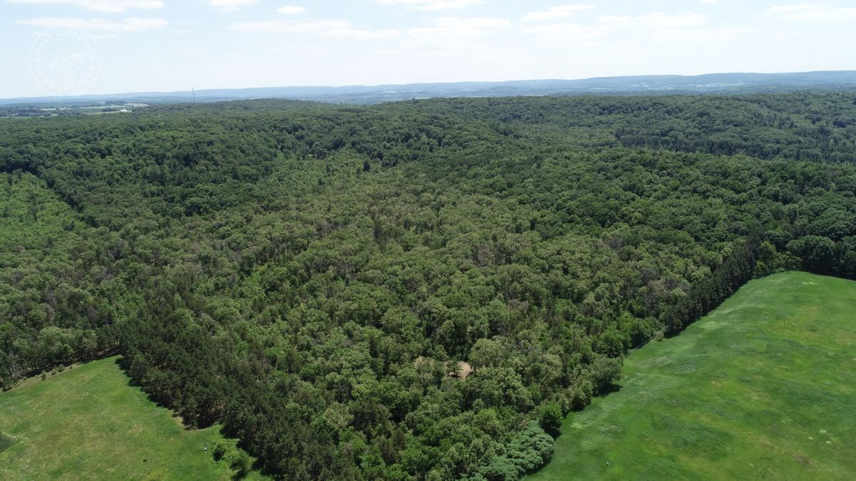 40 Acres of Hunting Land Sauk County, WI