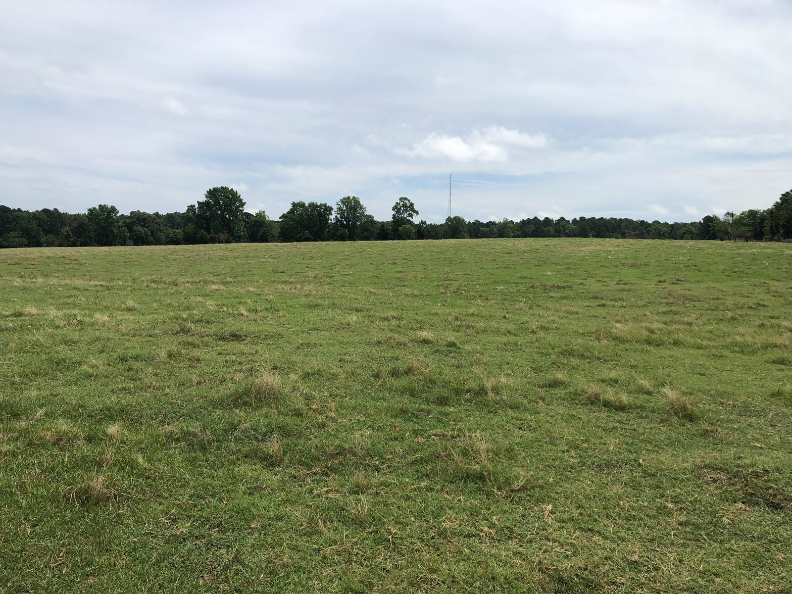 East Tx Ranch Land For Sale 53± acre Cattle Land in Texas