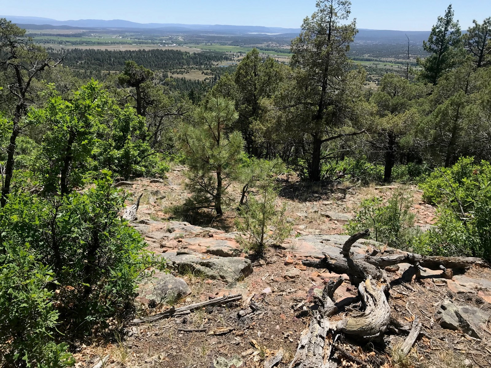Northern NM Mountain Land for Sale Real Estate Near Chama NM