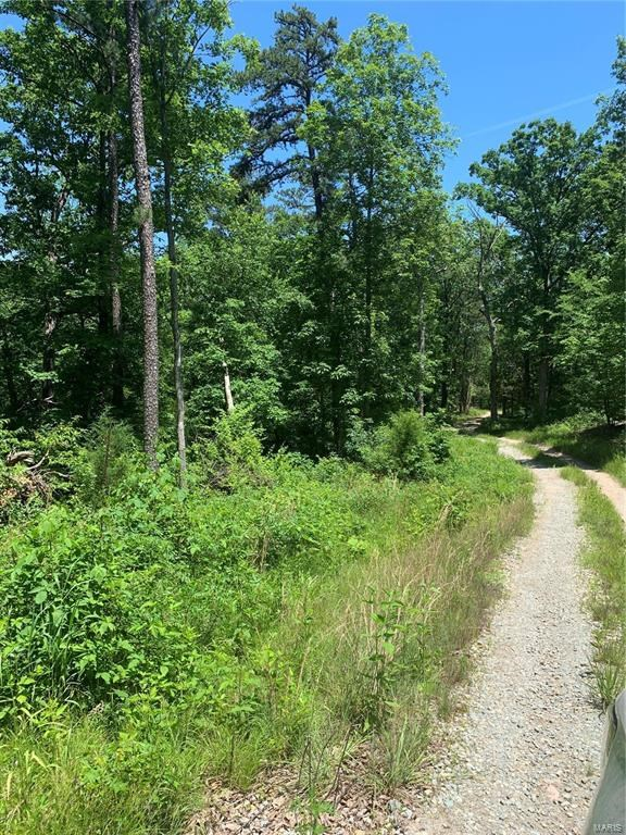 WOODED BUILDING LOT FOR SALE