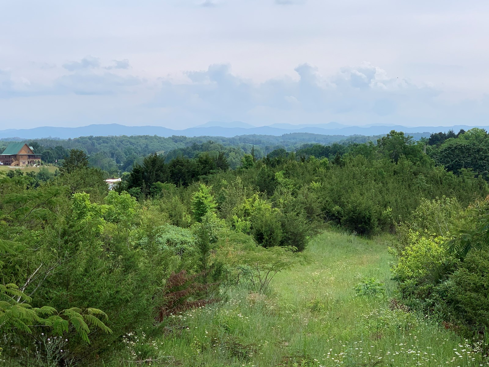 Unrestricted Land For Sale Greene County Tennessee