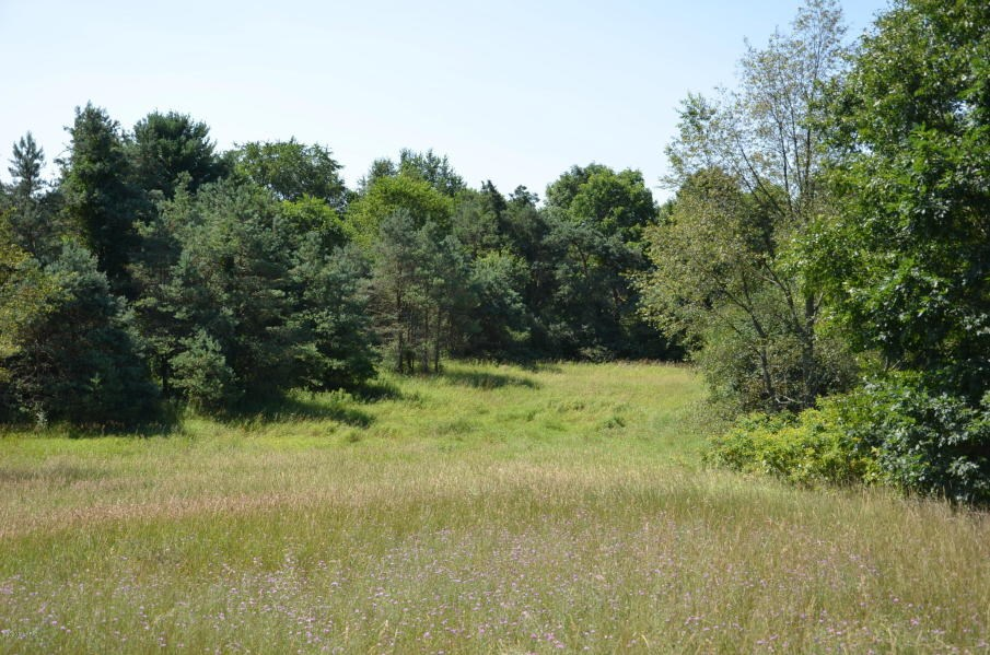 94-acres for sale in Bedford Township Calhoun County