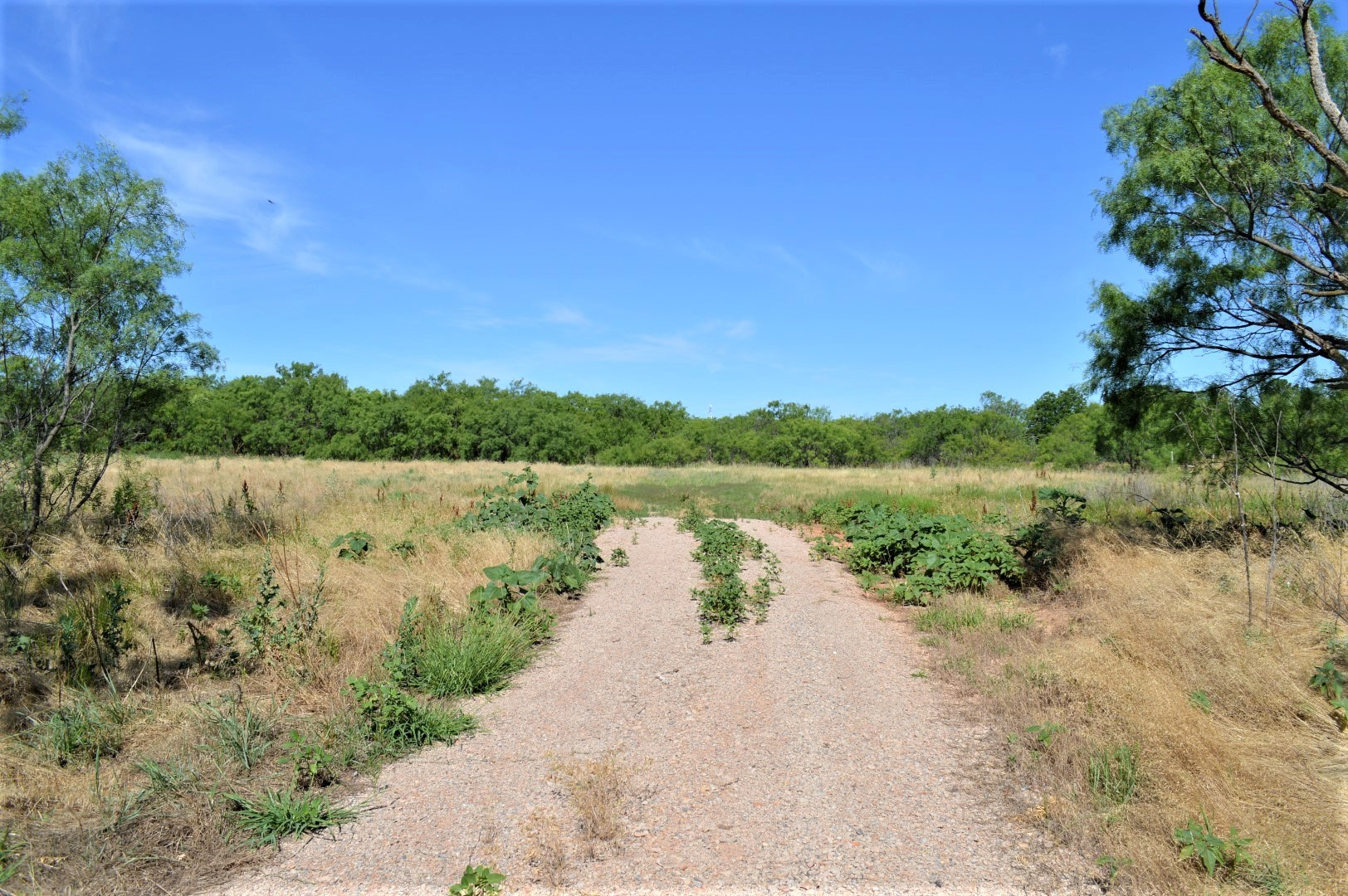 Land For Sale Holliday Texas Archer County Holliday School