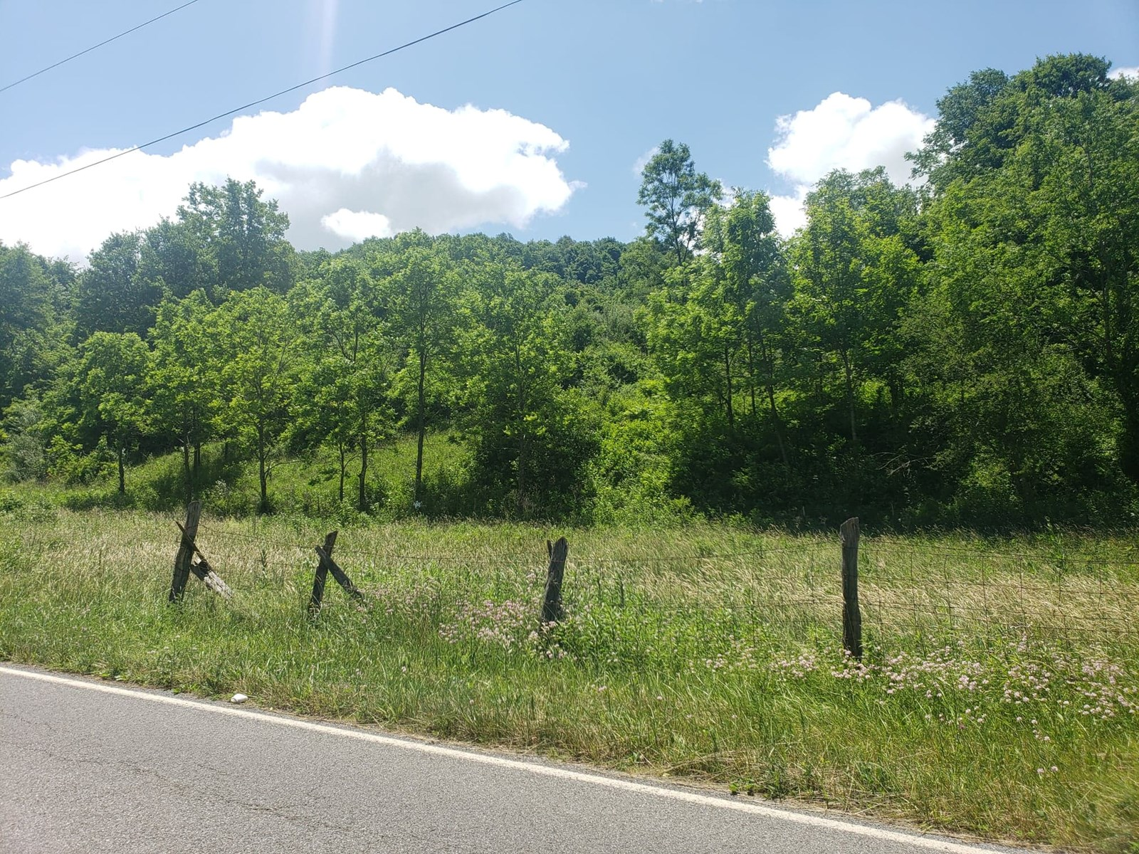23 Acres Recreational Land in Cavitts Creek Tazewell, VA