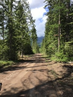 Ideal 10 Acres For Sale Near Clark Fork, Idaho