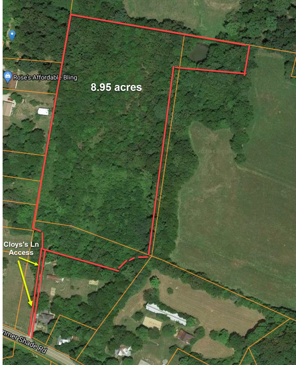 Wooded Land for Sale, Potential HOme Site, Summer Shade KY