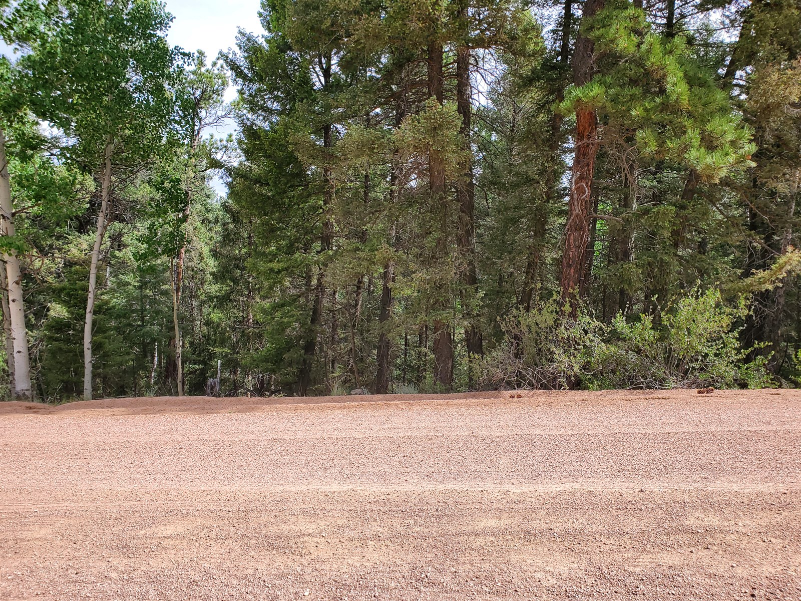 Wooded lot Florissant CO National Forest Fishing Hiking