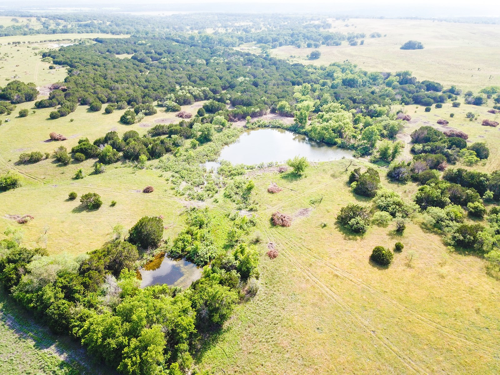 Land for Sale in Texas - 36+/- Acres in Hamilton County