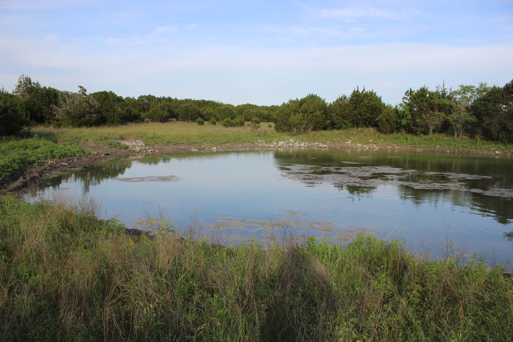 Land for Sale in Texas - 28+/- Acres in Hamilton County