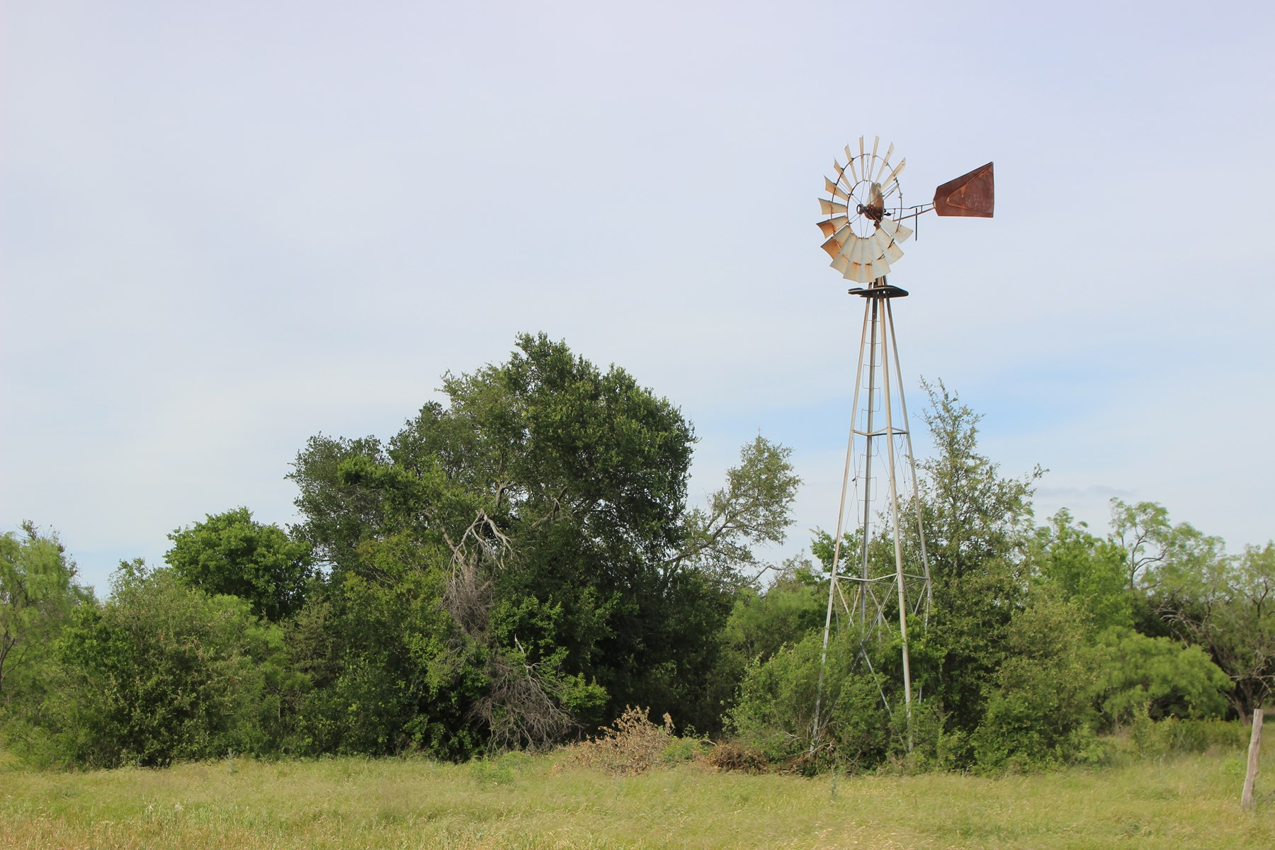 Land for Sale in Texas - 49+/- Acres in Hamilton County