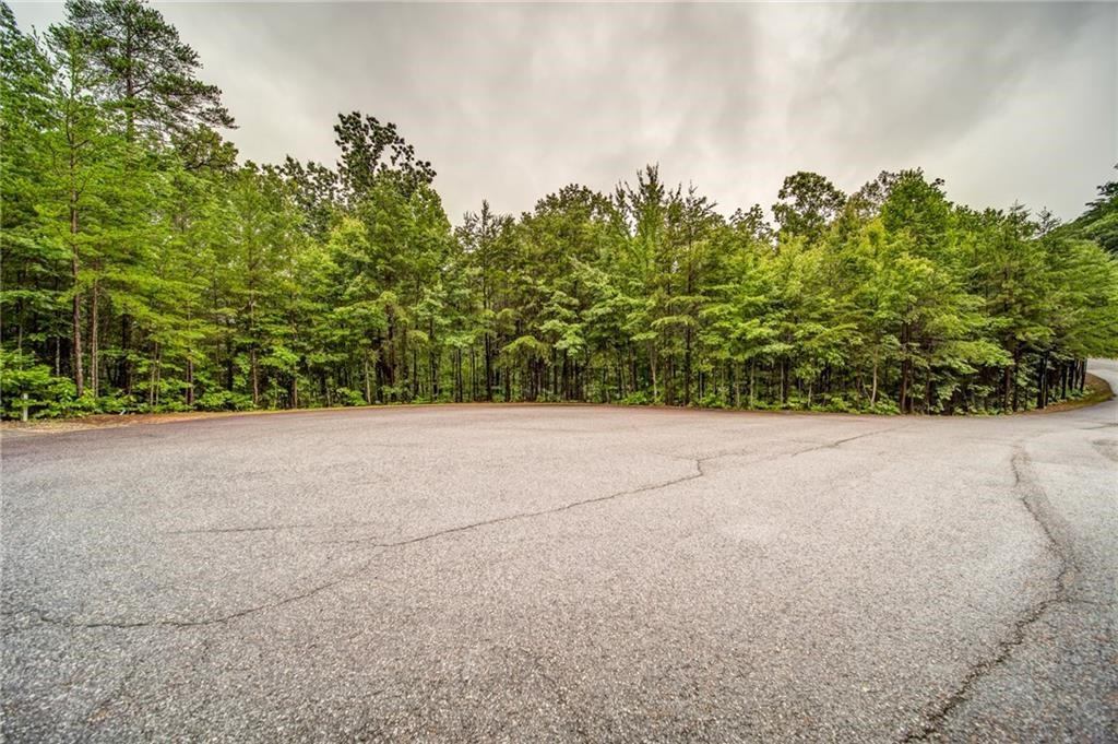 Mountain Property for Sale in Dahlonega