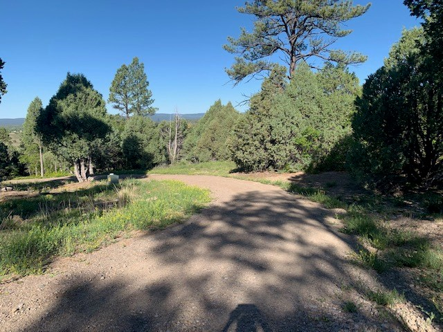 NORTHERN NM PROPERTY